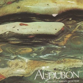 Aududon cover