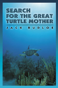 TurtleMother37
